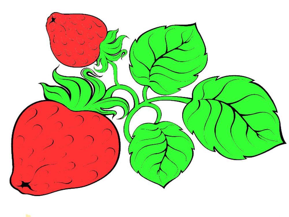 Раскраски-Овощи, фрукты, ягоды-Клубника